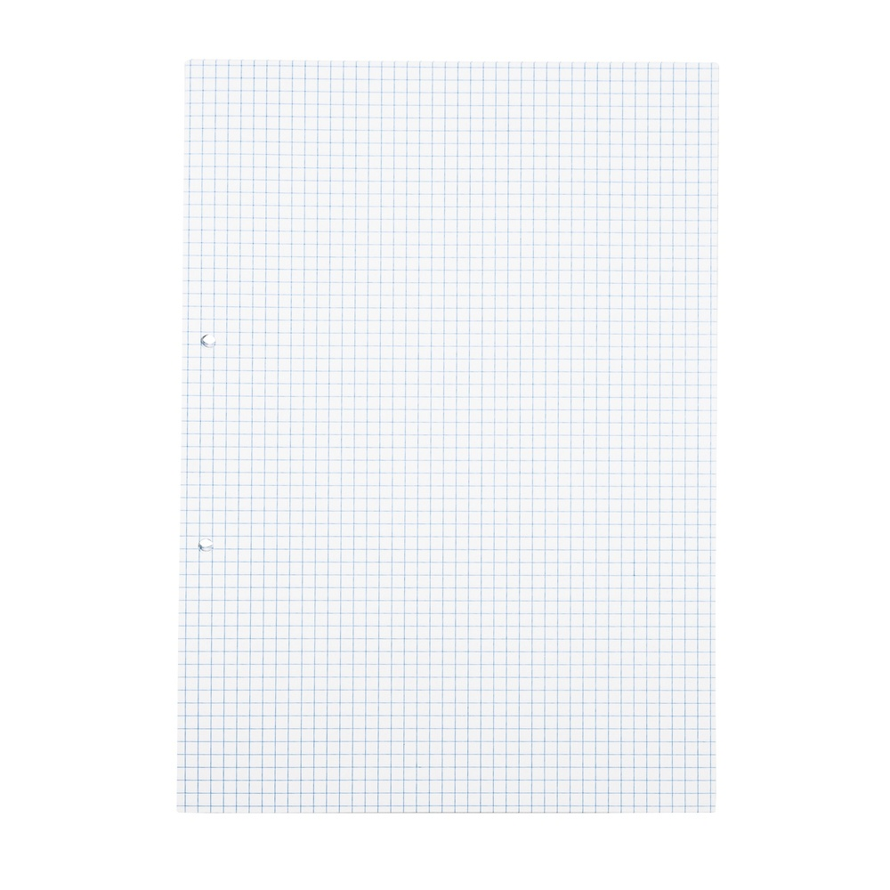 Exercise Paper A4 5mm Squared 2 Hole Punched