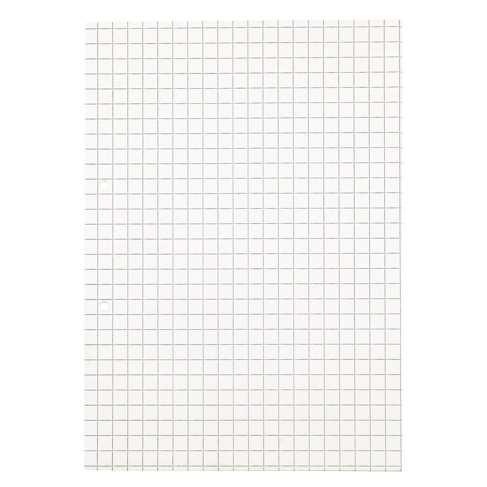 Exercise Paper A4 10mm Squared 2 Hole Punched